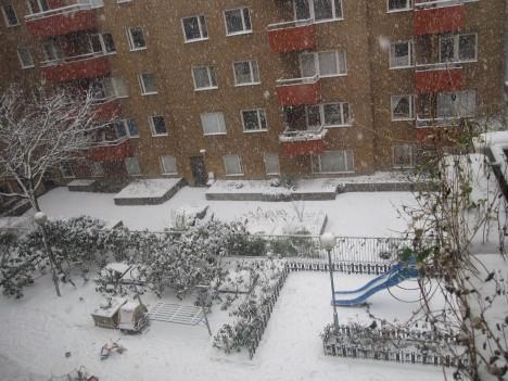 snoyra-2211-2008
