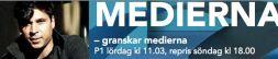 MEDIERNA logo