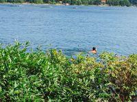 Café Hembygdsgården simmare