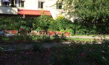 27 september 2014 i min park