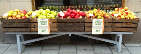 Fem sorter svenska äpplen