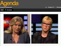 Agenda 15.2 2015 Margot Wallström