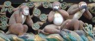 Tre apor fr Wikipedia