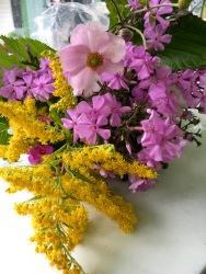 Blommor från koloniträdgård