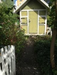 Grön stuga i koloniträdgård