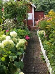 Röd stuga i koloniträdgård